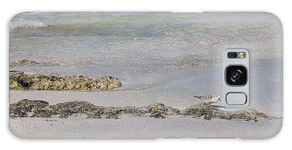 Shorebird Galaxy Case