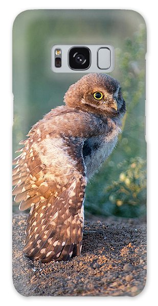 Shy Young Burrowing Owl Galaxy Case