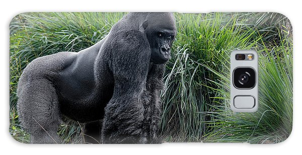 Galaxy Case featuring the photograph Silverback Stare 1806 by Donald Brown