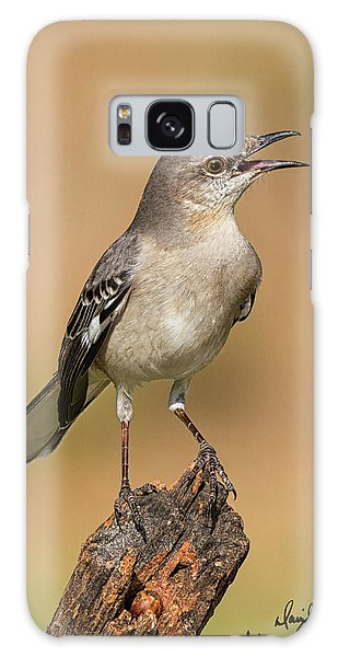Singing Mockingbird Galaxy Case
