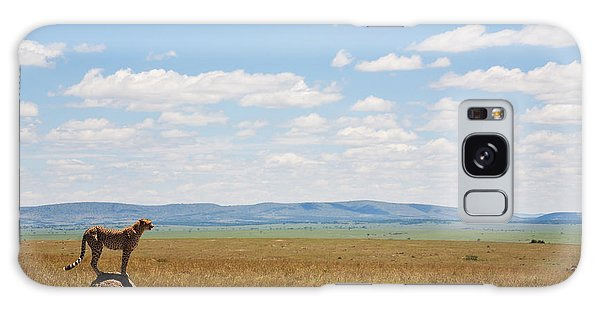 Scenery Galaxy Case - Single Cheetah In The Middle Of The by Stanislavbeloglazov