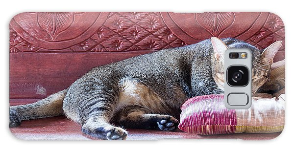 Tabby Galaxy Case - Sleeping Cat by Pun483