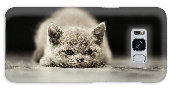Furry Galaxy Case - Sleepy British Kitten Over Black by Belovodchenko Anton