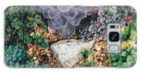 Small Succulent Garden Galaxy Case