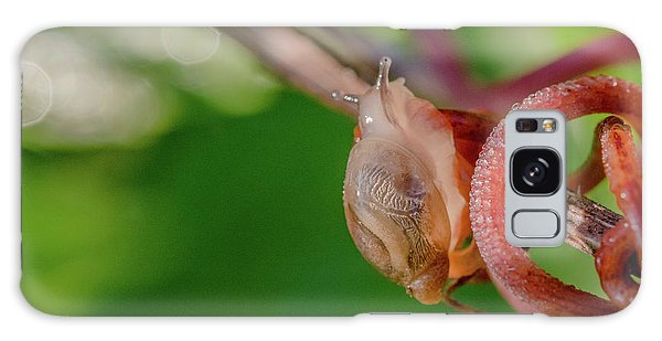 Snails Pace Galaxy Case