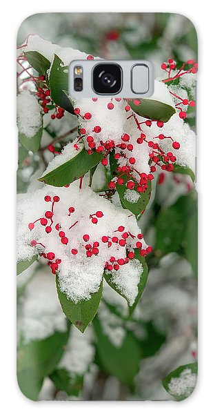 Snow Covered Winter Berries Galaxy Case