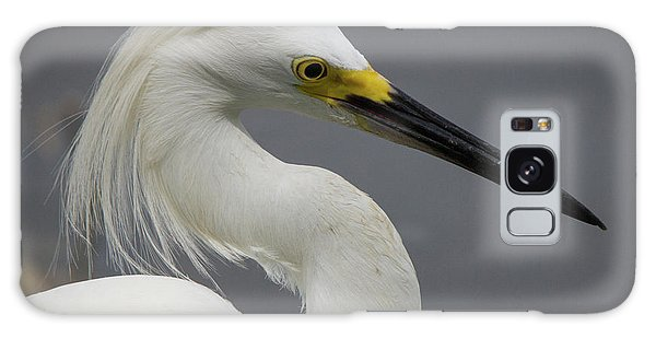 Snow Egret Portrait Galaxy Case