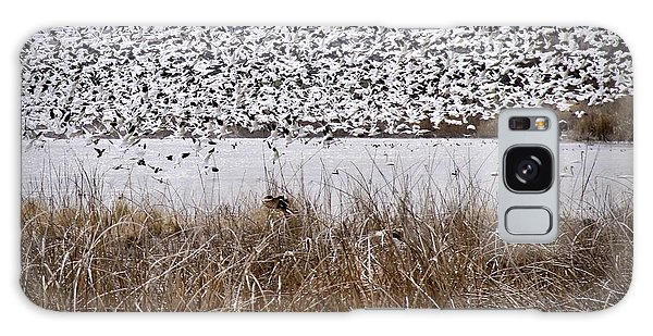 Snow Geese Migration Galaxy Case