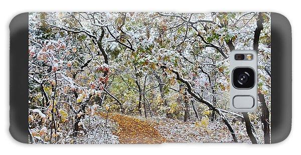 Snow Greets Autumn Galaxy Case