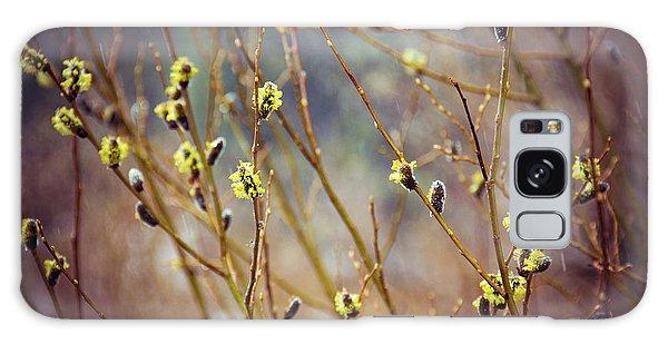 Snowfall On Budding Willows Galaxy Case