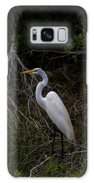 Snowy Egret On A Hot Summer Day Galaxy Case