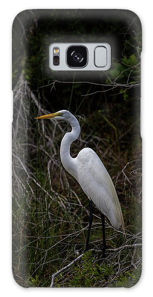 Great Egret On A Hot Summer Day Galaxy Case