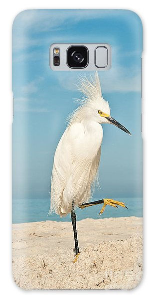 Egret Galaxy Case - Snowy Egret Standing On Sandy Beach On by Robert F. Leahy