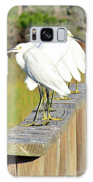 Snowy Egrets Eyeballing A Marsh On Jekyll Island Galaxy Case
