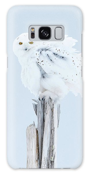 Snowy Owl Feather Shake Galaxy Case