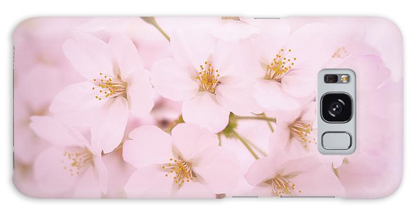 Soft Cherry Blossoms Galaxy Case