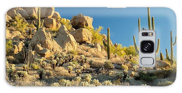 Desert Flora Galaxy Case - Sonoran Desert Landscape by Stacy Funderburke