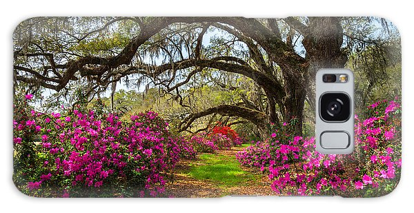 Scenery Galaxy Case - South Carolina Spring Flowers by Dave Allen Photography