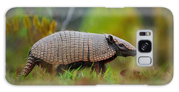 Claws Galaxy Case - Southern Naked-tailed Armadillo by Ondrej Prosicky