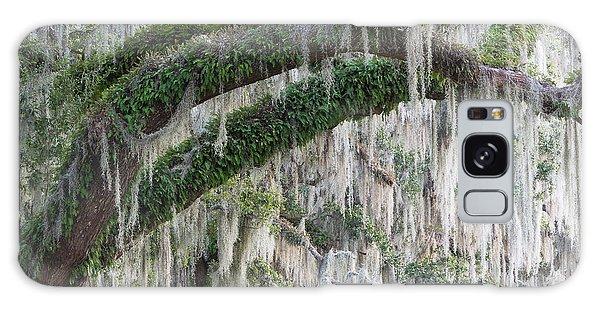 Spanish Moss Cascade Galaxy Case