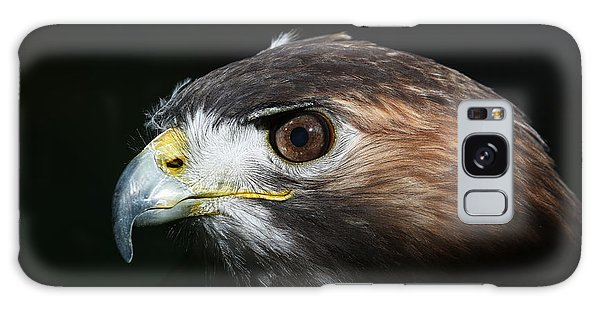 Sparkle In The Eye - Red-tailed Hawk Galaxy Case