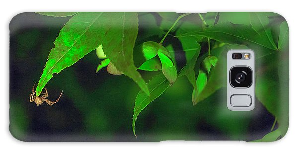 Spider At Night On A Leaf Galaxy Case