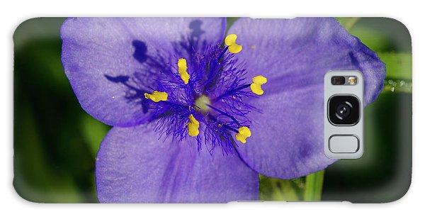 Spiderwort Flower Galaxy Case