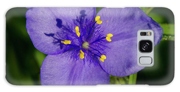 Spiderwort Flower Galaxy Case