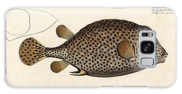 Reef Diving Galaxy Case - Spotted Trunk Fish  by Antique Images
