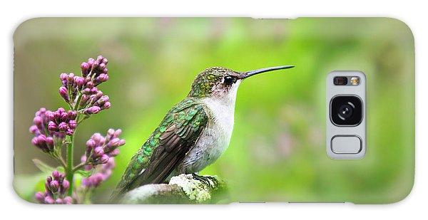 Spring Beauty Ruby Throat Hummingbird Galaxy Case