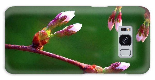Bud Galaxy Case - Spring Buds - Weeping Cherry Tree by Tom Mc Nemar