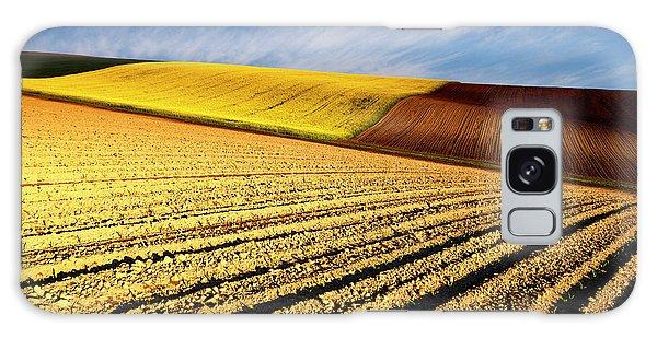 Spring Fields Galaxy Case