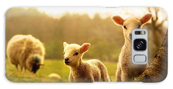 Farmland Galaxy Case - Spring Lambs by Drew Rawcliffe