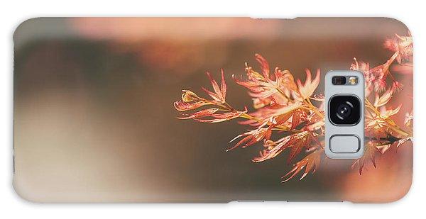 Spring Or Fall Galaxy Case