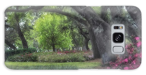 Springtime In The Park Galaxy Case