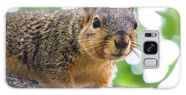 Squirrel Close Up Galaxy Case