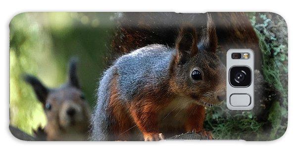 Squirrels Galaxy Case