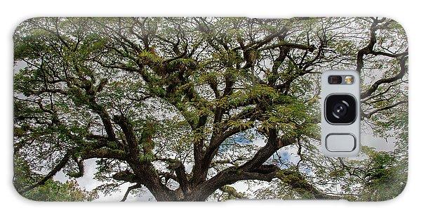 St. Kitts Saman Tree Galaxy Case