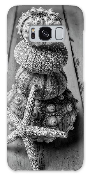 Sea Stacks Galaxy Case - Stacked Sea Urchins And Starfish Black And White by Garry Gay