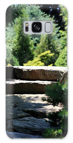 Stone Stairs In Chicago Botanical Gardens Galaxy Case
