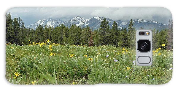 Stormy Tetons And Flowers Galaxy Case