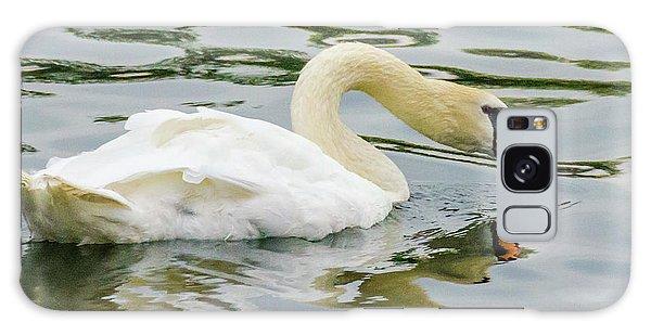 Strasbourg Swan Galaxy Case