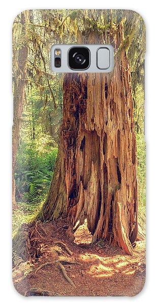 Stump In The Rainforest Galaxy Case