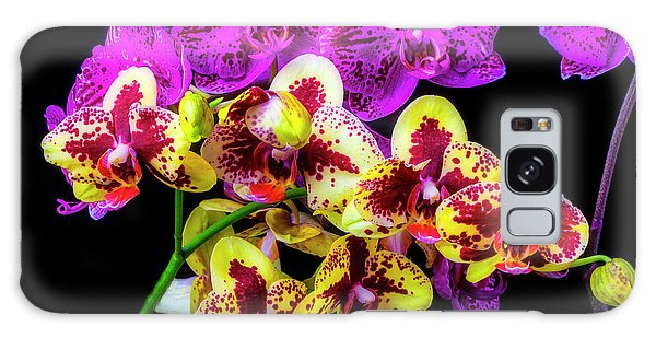 Orchidaceae Galaxy Case - Stunning Purple Yellow Orchids by Garry Gay
