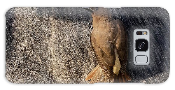 Sub-adult Yellow-billed Oxpecker On Cape Buffalo Galaxy Case