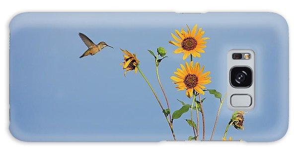 Summer Day Hummingbird Galaxy Case