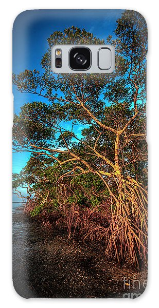 Mangrove Galaxy Case - Summer Winds by Marvin Spates