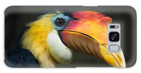 Indian Head Galaxy Case - Sunda Wrinkled Hornbill Aceros by Vladimir Wrangel