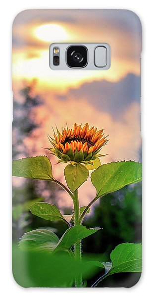 Sunflower Opening To The Light Galaxy Case
