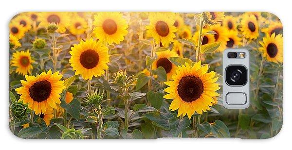 Sunflowers Field Galaxy Case